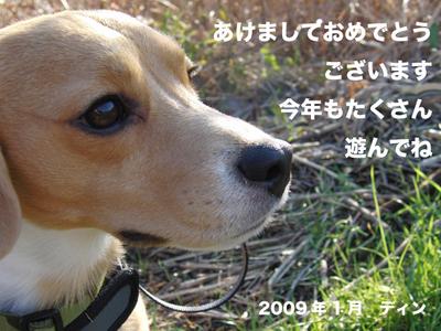0105お正月1.jpg