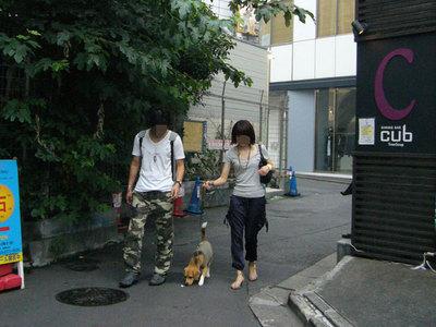 0702働く犬12.jpg