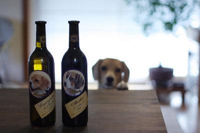 0707ハルクワイン2.jpg
