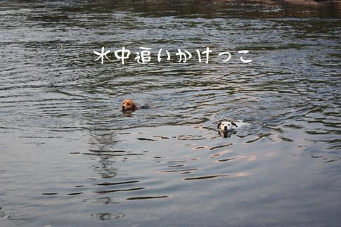 0727多摩川最高4.jpg
