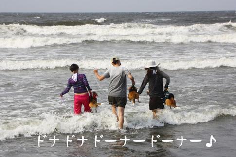 0815海水浴30.jpg