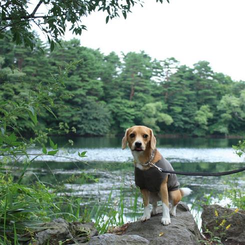 0830小野川湖5.jpg
