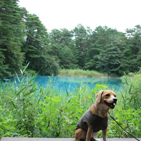 0830小野川湖7.jpg
