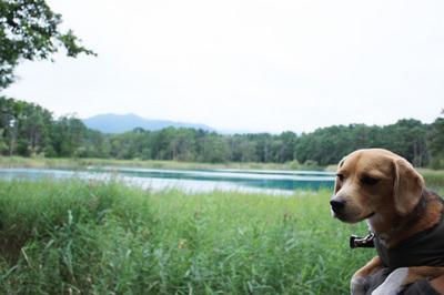 0830小野川湖9.jpg