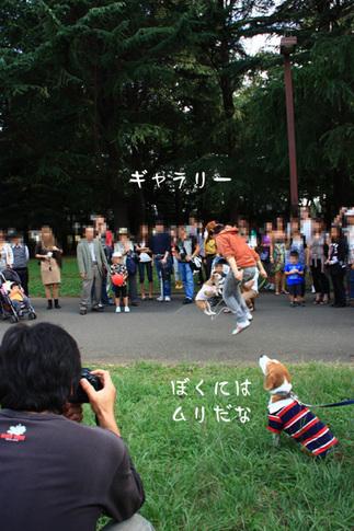 1003代々木公園30.jpg