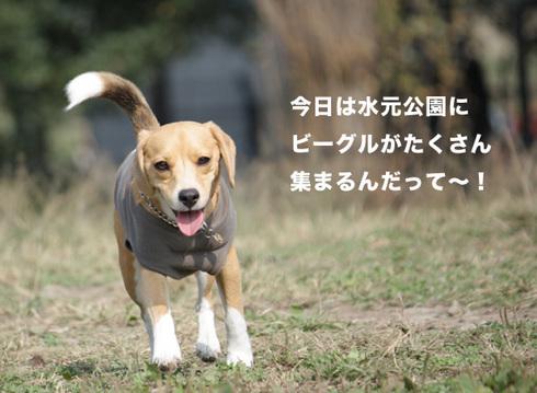 1031水元2005オフ0.jpg