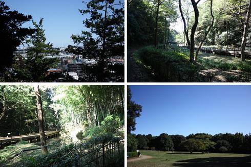 1103高根森林公園2.jpg