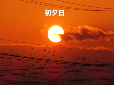 0105お正月11.jpg