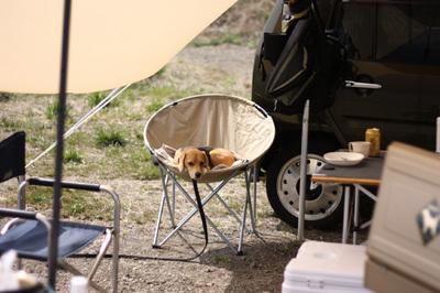 0418西湖初キャンプ12.jpg