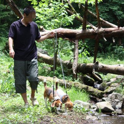 0620道志の森7.jpg
