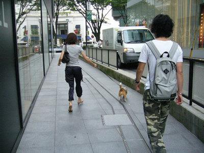 0702働く犬7.jpg