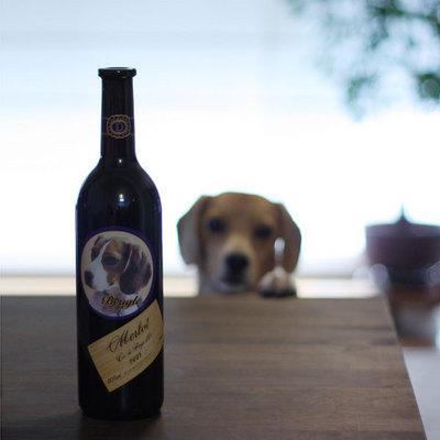 0707ハルクワイン6.jpg