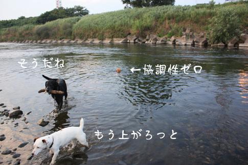 0727多摩川最高8.jpg