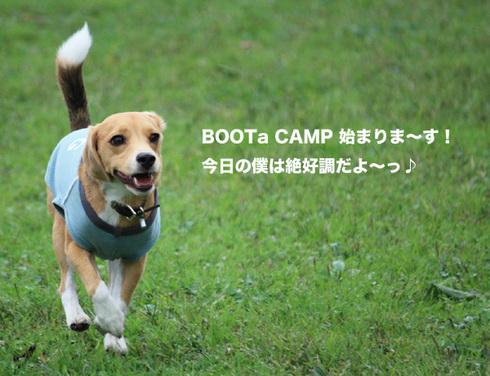 1010ブータキャンプ1.jpg