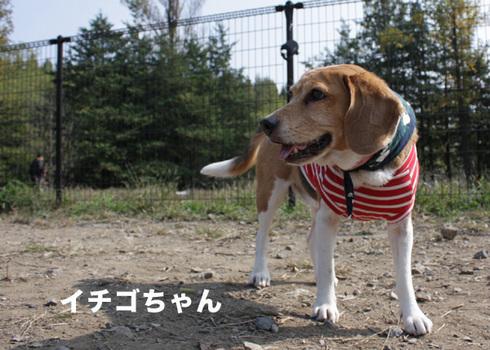 1031水元2005オフ13.jpg
