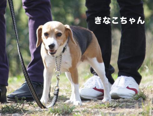 1031水元2005オフ9.jpg